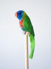 Rainbow lorrikeet Pencil