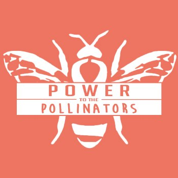 Shirt, Pollinators XL
