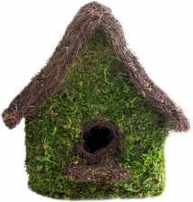 Birdhouse, Maison Moss MD