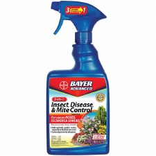 Bayer 3 in 1 Mite/Disease 24oz