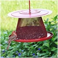Bird Feeder, Cardinal NO/NO