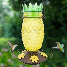 Bird Feeder, Pineapple Humm