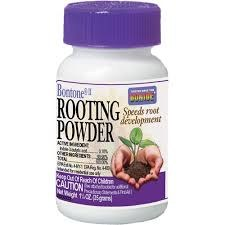 Bonide Rooting Powder