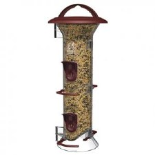 Bird Feeder, Feast