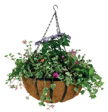 Hanging Basket Forge 20""