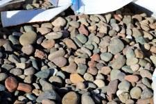 """Stone, Multicolor Creek, 1-2"""""""