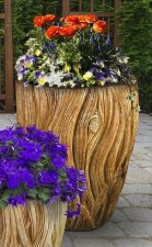 Planter, Banyan, Large