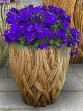 Planter, Banyan, Small