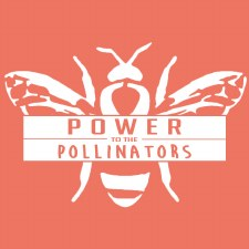 Shirt, Pollinators SM