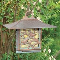 Bird Feeder, Suet, Nuthatch