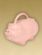 Watering Can, Pig