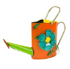 Birdhouse, Watering Can