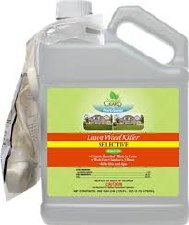 Fertilome Lawn Weed Killer RTU