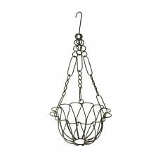 Hanging Basket, Rain Drop