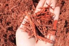 Mulch, Bulk, Red-Dyed, cyd.