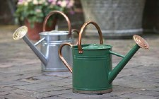 Watering Can, Galv Dark Green