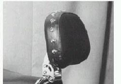 CW Backrest DVR VTX1800 Custom
