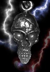 ZP Long Skull
