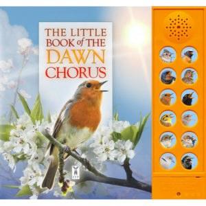 HoM Little Book of The Dawn Ch