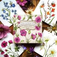 Burren FF Notecards Cranesbill