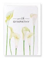 Ezen  Calla Lily of Sympathy