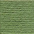 Hayfield Bonus dk 825 Grass