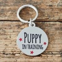 Dog Tag Puppy in Training
