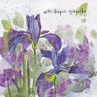 Alex Clark Sympathy Irises