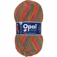 Opal Cotton Prem 9840 Autumnal