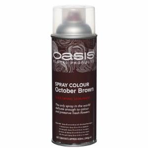 October brown oasis florist spray paint,400ml