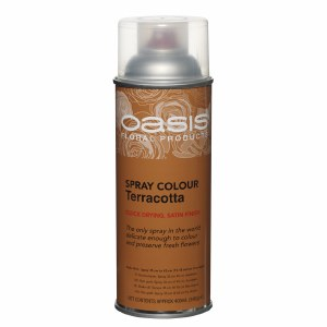 Terracotta Oasis spray paint