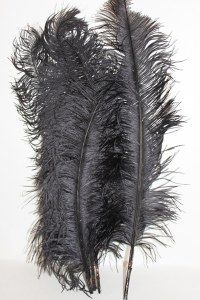 5 x Ostrich feathers black