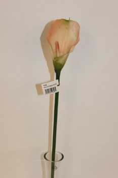 Pink and green single calla lily, height-70cm