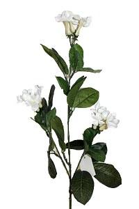 Artificial silk Stephanotis flower