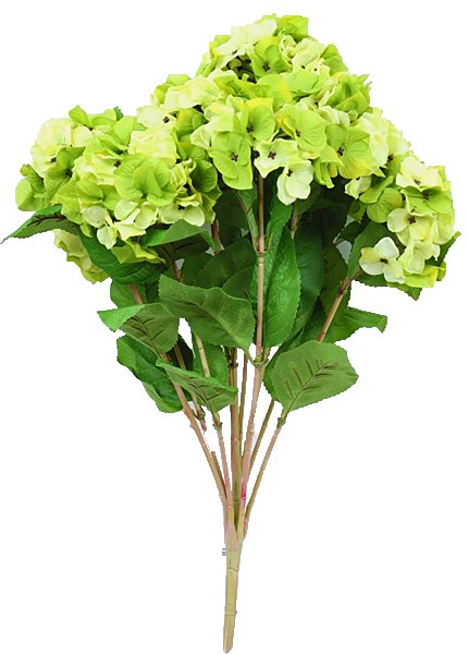 Green artificial Hydrangea flower bunch