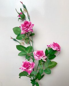 Pink beauty rose stem x 4 roses