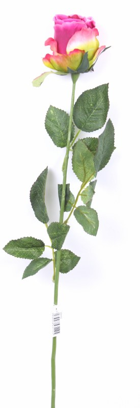Pink beauty single stem rose