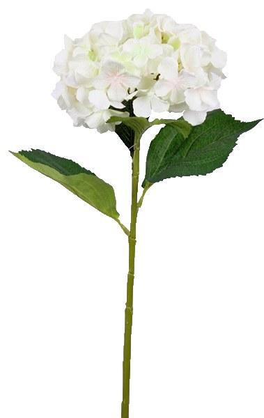 Cream hydrangea stem 80cm
