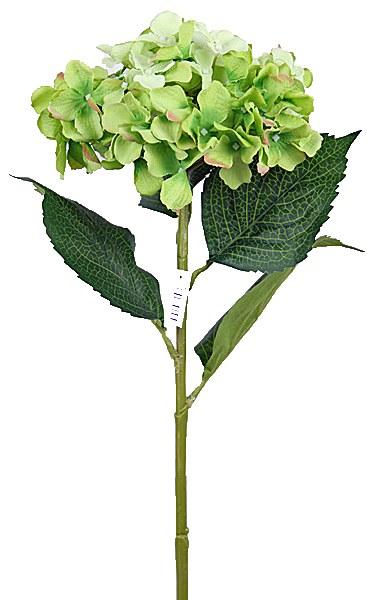 Green hydrangea stem 80cm