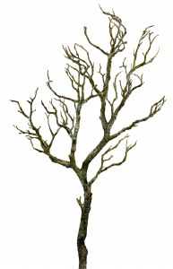 Artificial Wishing Tree Branch 90cm