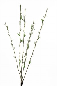 Artificial Pussy Willow Stems 86cm