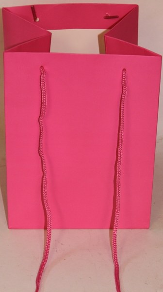 Florist bags x 10 hot pink