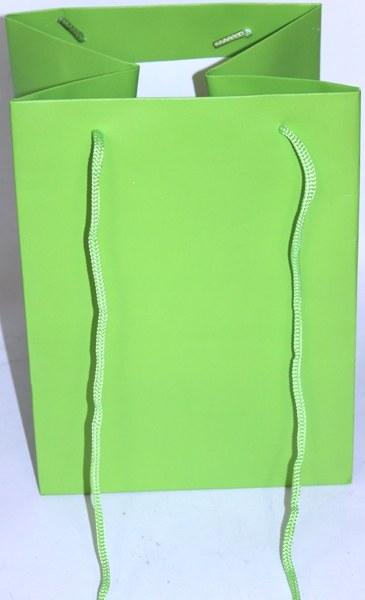 Florist bag lime green x 10