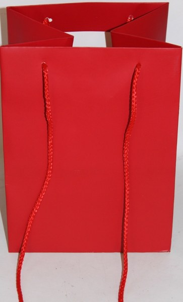 Florist bag x 10 Red