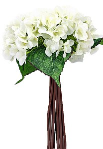 Ivory Hydrangea bundle x 12 stems 35cm