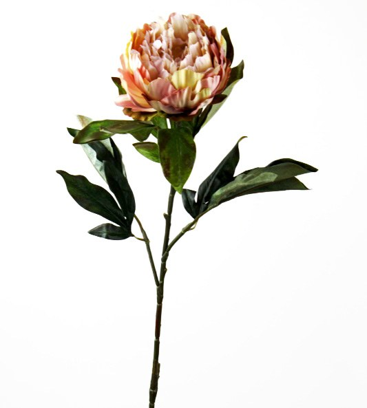 Artificial Peony Flower Long Stem Pale Pink