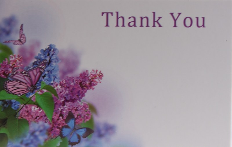 Florist Cards Small Thank You x 50