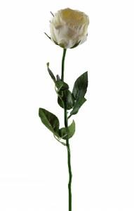 Ivory Artificial Rose Single Stem