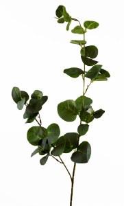 Artificial Eucalyptus Stem 98cm
