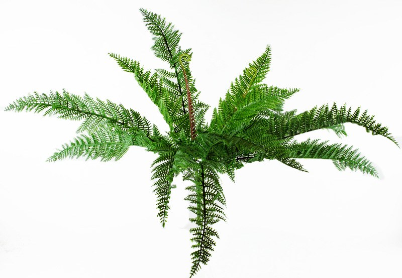 Artificial Boston Fern Bunch